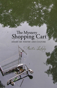 Anita_Lahey-The_Mystery_Shopping_Cart_orig