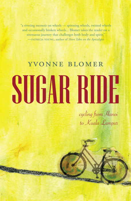 Blomer cover copy.indd